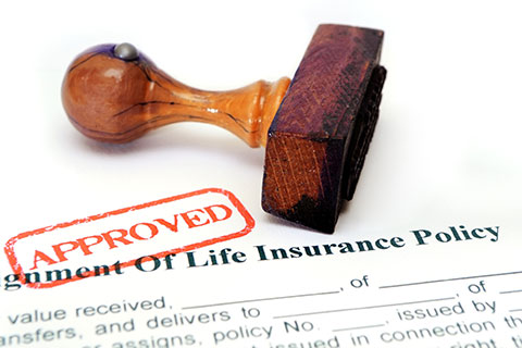 Approved life insurance policy in Seymour IN